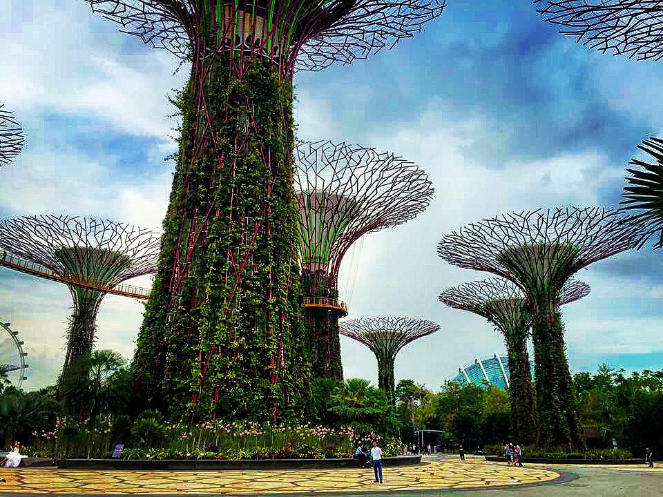 The Supertree Grove At Gardens By The Bay In Singapore Cannot Be Missed When Visiting