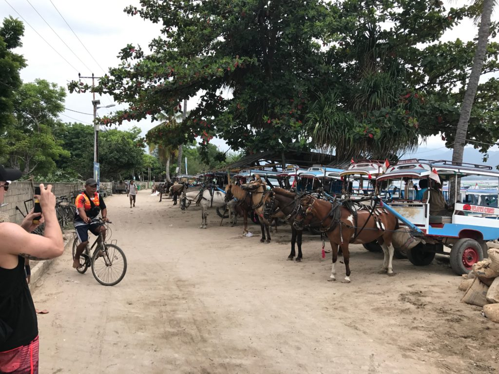 Walking is the best way to get around the island, as it's super small. There are horse drawn buggies available, but they're not exactly ethical.