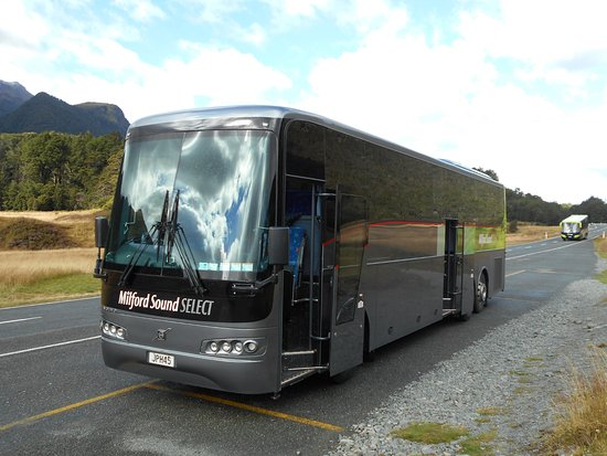 I suggest taking Milford Sound Select Coach Bus Tour rather than driving to Milford Sound, New Zealand, so you can relax and enjoy the ride.