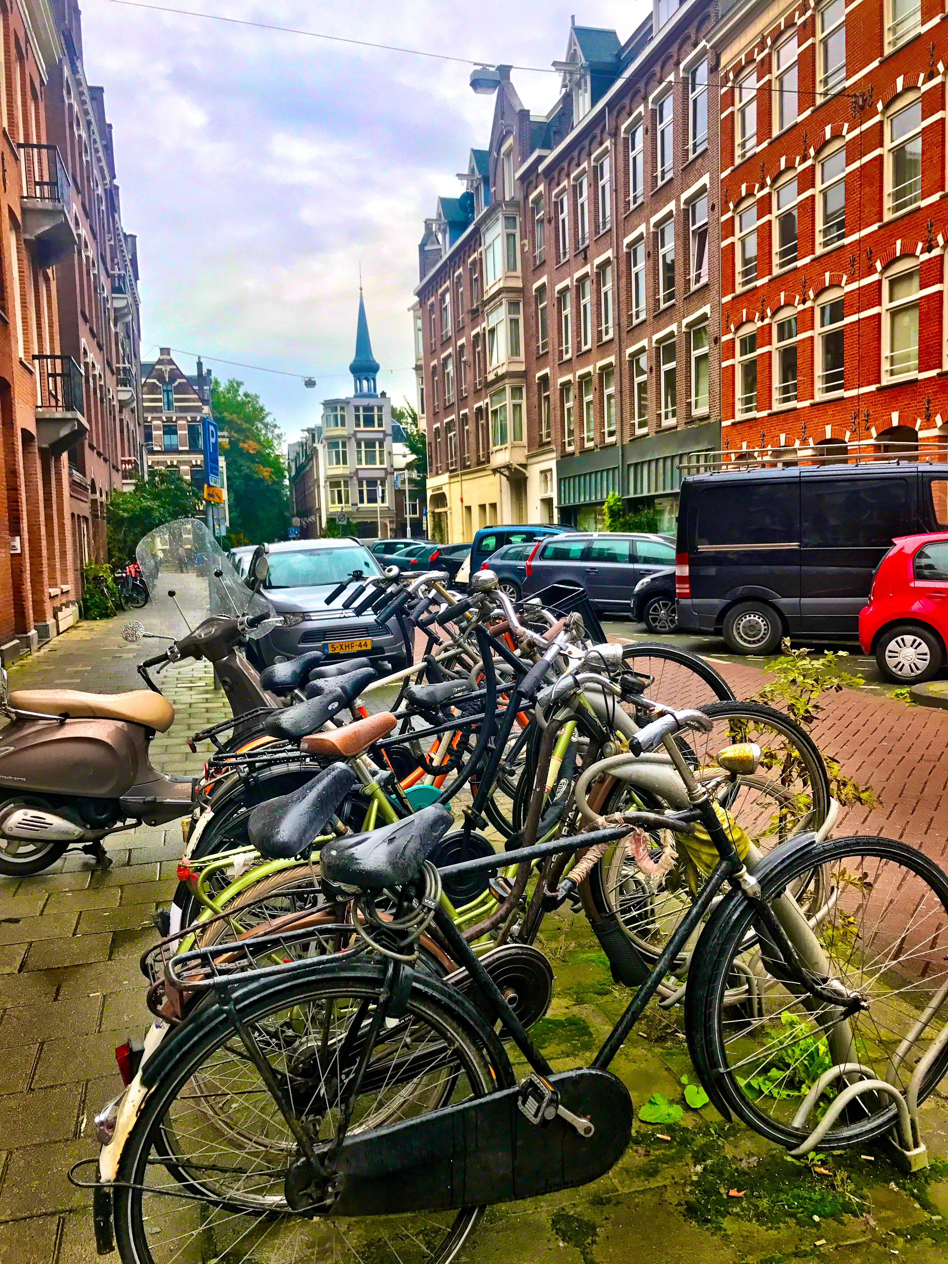 Exploring Amsterdam, Netherlands on bikes is the BEST way to see the city!