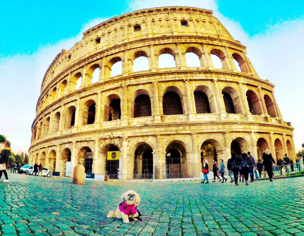 The Colosseum in Rome is a MUST see both inside and out!