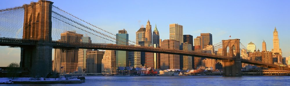 New York City: The Best of The Big Apple